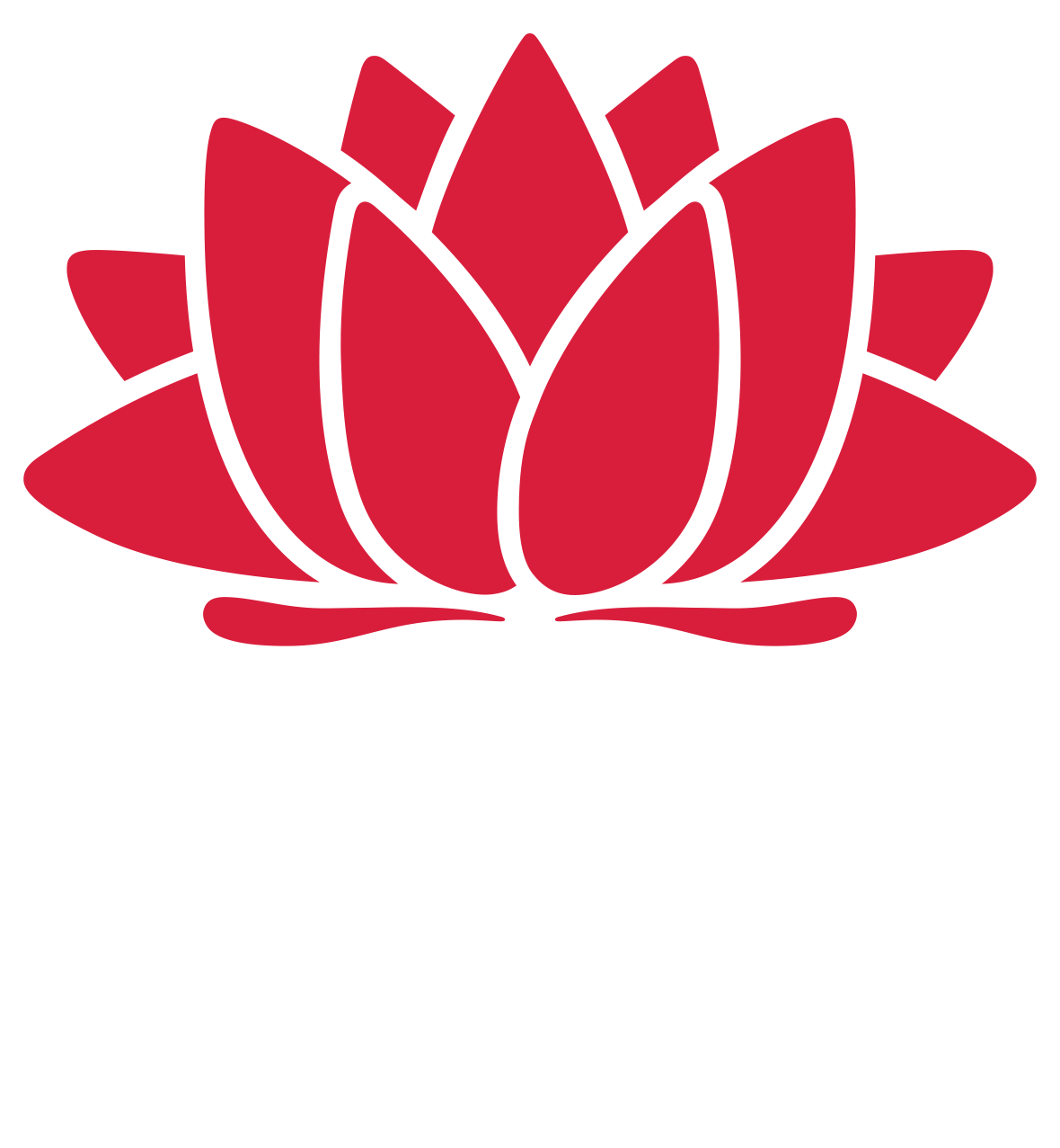 NSW Education Data Hub
